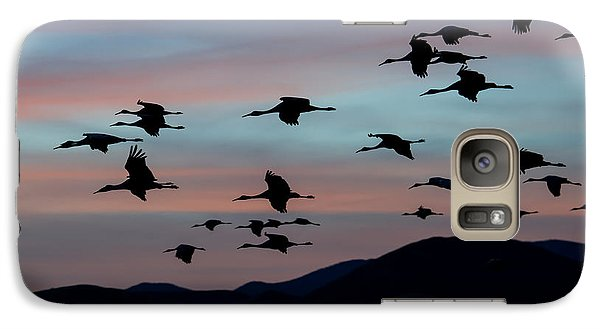 Galaxy Case featuring the photograph Sandhill Cranes Landing At Sunset 2 by Avian Resources