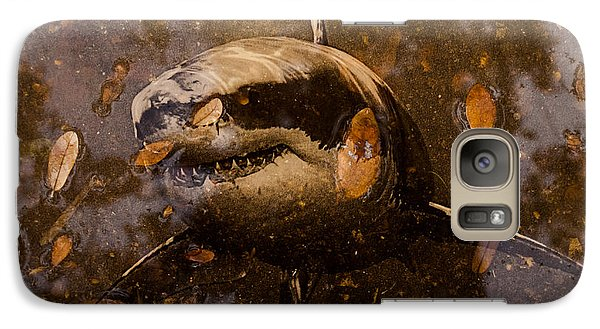 Galaxy Case featuring the photograph Shark by Randy Sylvia