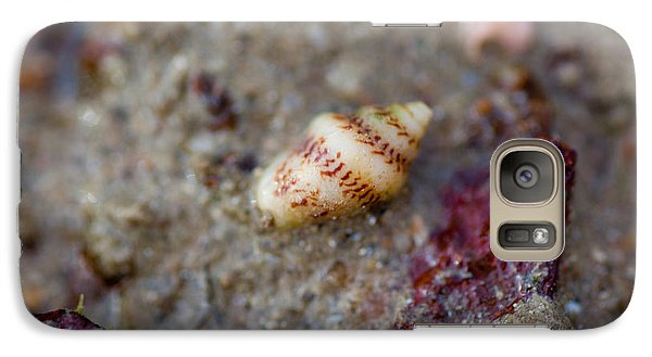 Galaxy Case featuring the photograph Shell Alone by Carole Hinding