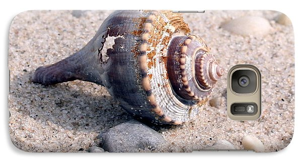 Galaxy Case featuring the photograph Shell by Karen Silvestri