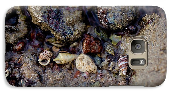 Galaxy Case featuring the photograph Shells In Bauxite by Carole Hinding