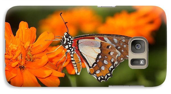 Galaxy Case featuring the photograph Sherbet With A Butterfly On Top  by Ruth Jolly