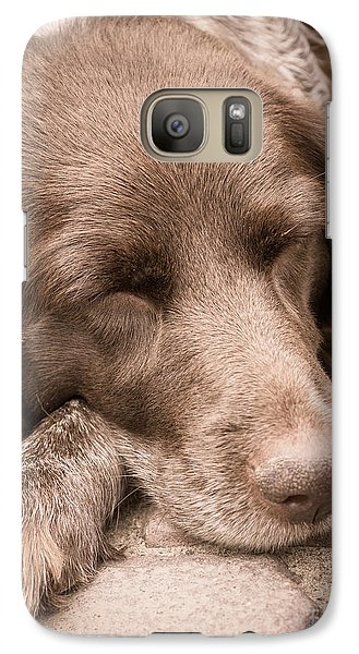 Galaxy Case featuring the photograph Shishka Dog Dreaming The Day Away by Peta Thames