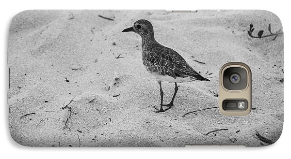 Galaxy Case featuring the photograph Shore Bird by Phil Abrams