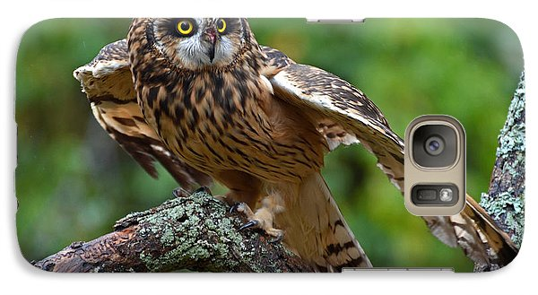 Galaxy Case featuring the photograph Short Eared Owl by Rodney Campbell
