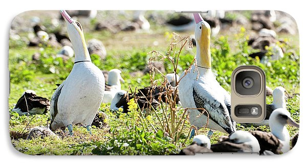 Short-tailed Albatross (phoebastria Galaxy S7 Case