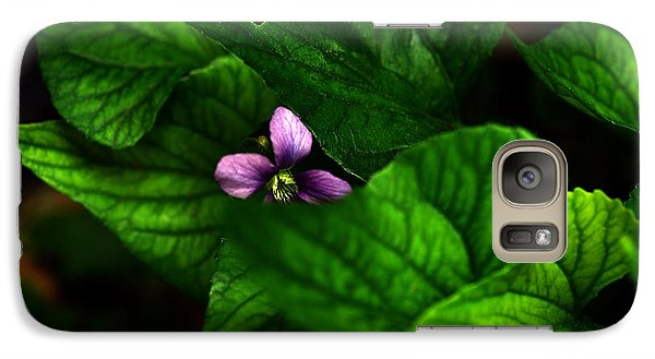 Galaxy Case featuring the photograph Shrinking Violet by Wanda Brandon