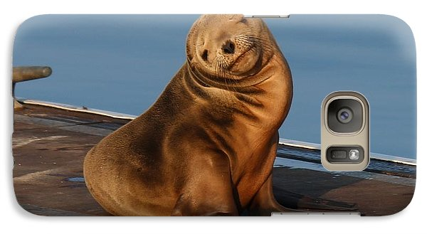 Galaxy Case featuring the photograph Shy Sea Lion Pup  by Christy Pooschke