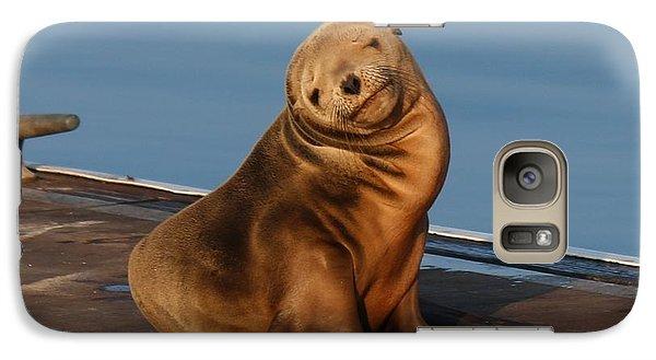 Shy Sea Lion Pup  Galaxy S7 Case