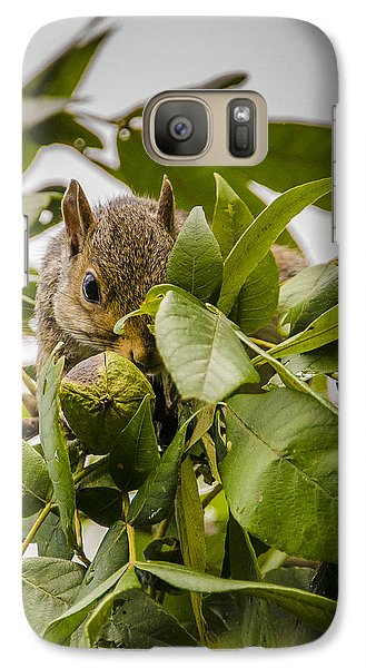 Galaxy Case featuring the photograph Shy Squirrel by Bradley Clay