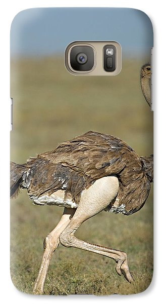 Ostrich Galaxy S7 Case - Side Profile Of An Ostrich Running by Panoramic Images
