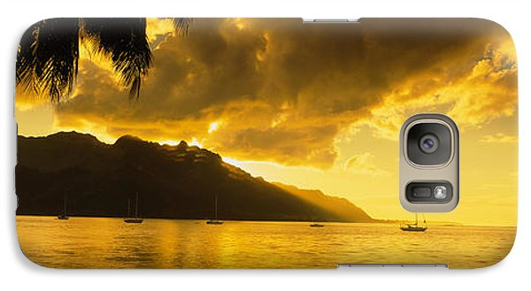 Silhouette Of Palm Trees At Dusk, Cooks Galaxy Case by Panoramic Images