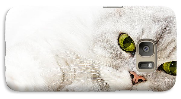 Galaxy Case featuring the photograph Silver Shaded Persian by Carsten Reisinger