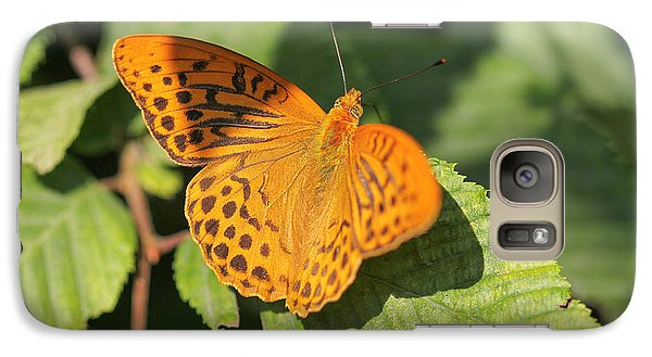 Galaxy Case featuring the photograph Silver-washed Fritillary  - Male - Argynnis Paphia by Jivko Nakev