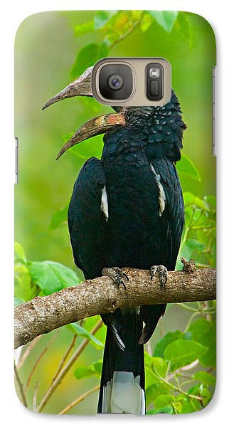 Hornbill Galaxy S7 Case - Silvery-cheeked Hornbill Perching by Panoramic Images