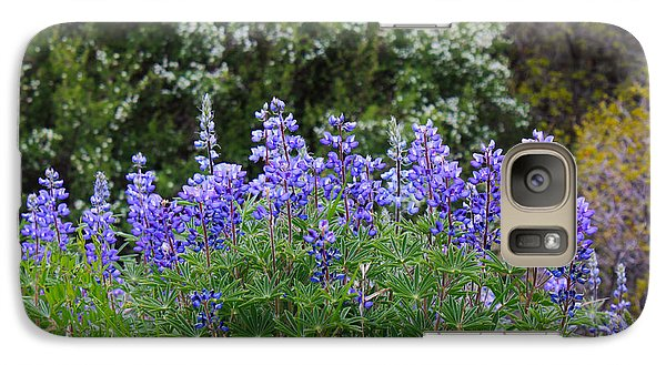 Galaxy Case featuring the photograph Silvery Lupine Black Canyon Colorado by Janice Rae Pariza