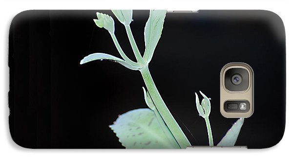 Galaxy Case featuring the photograph Simplicity by Linda Cox
