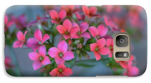 Galaxy Case featuring the photograph Simply Kalanchoe by Penni D'Aulerio