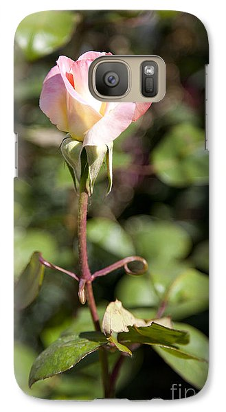 Galaxy Case featuring the photograph Single Rose by David Millenheft