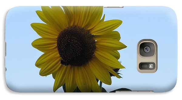 Galaxy Case featuring the photograph Single Sunflower And The Bees by Tina M Wenger