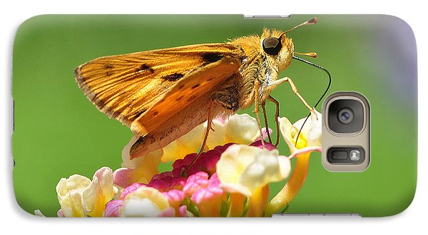 Galaxy Case featuring the photograph Skipper On Lantana by Kathy Baccari