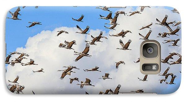 Skyful Of Cranes Galaxy S7 Case