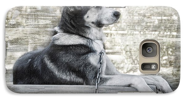 Galaxy Case featuring the photograph Tuya - Sled Dog Of Denali by Dyle   Warren