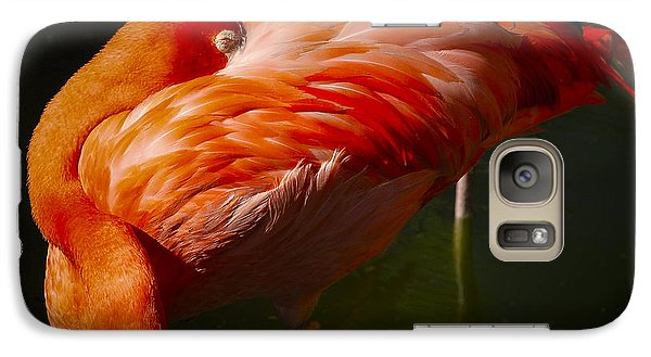 Galaxy Case featuring the photograph Sleeping Flamingo by Phil Abrams