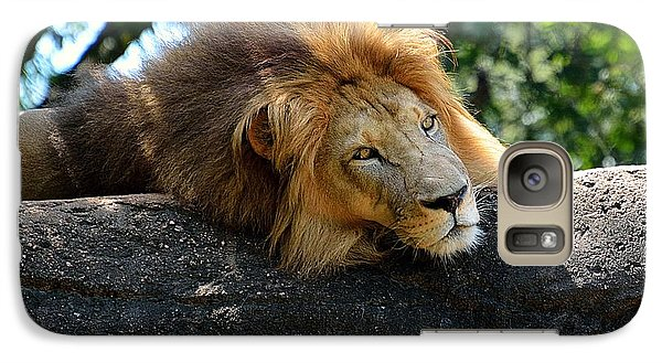 Galaxy Case featuring the photograph Thinking Lion by Lisa L Silva