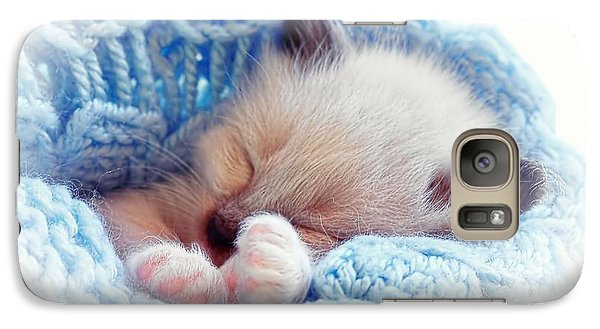 Galaxy Case featuring the photograph Sleeping Siamese Kitten by Tracie Kaska