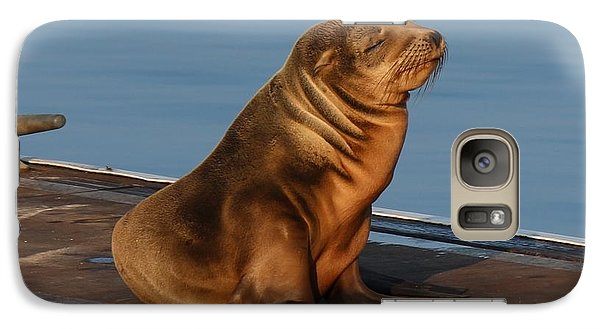 Sleeping Wild Sea Lion Pup  Galaxy S7 Case