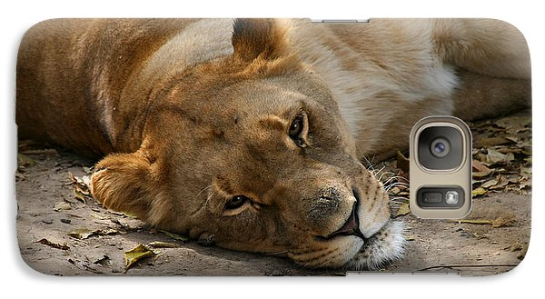 Galaxy Case featuring the photograph Sleepy Lioness by Ann Lauwers