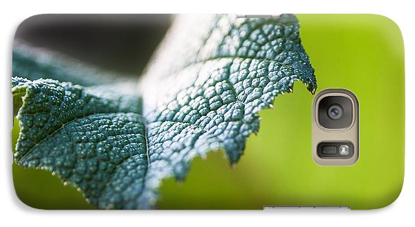 Galaxy Case featuring the photograph Slice Of Leaf by John Wadleigh