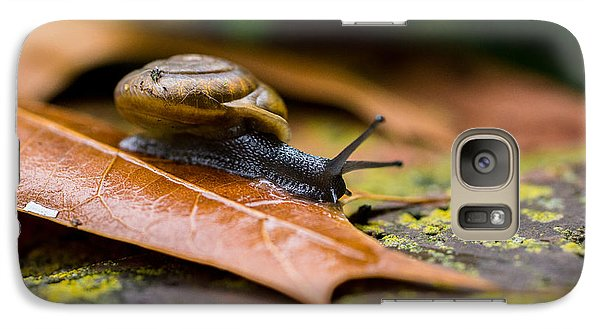 Galaxy Case featuring the photograph Slow And Steady Wins The Race by Julie Clements