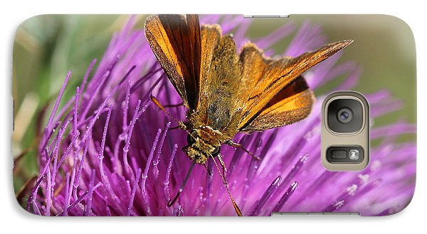 Galaxy Case featuring the photograph Small Skipper - Thymelicus Sylvestris by Jivko Nakev