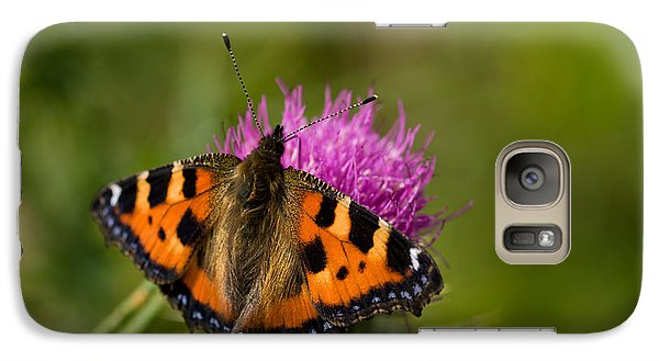 Galaxy Case featuring the photograph Small Tortoiseshell Butterfly by Liz  Alderdice