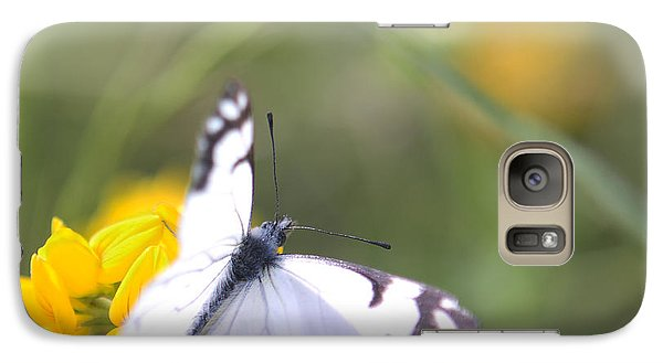 Galaxy Case featuring the photograph Small White Butterfly On Yellow Flower by Belinda Greb