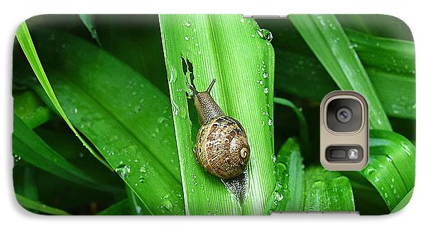 Galaxy Case featuring the photograph Snail Muncher by Wendy McKennon