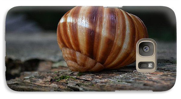 Galaxy Case featuring the photograph Snail Shell by Mary Zeman