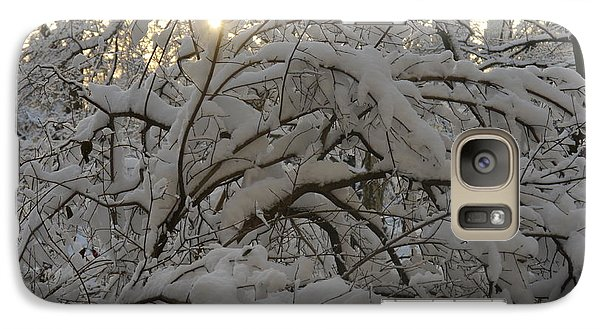 Galaxy Case featuring the photograph Snow Covered Tree And Sun by Winifred Butler