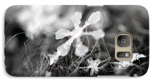 Galaxy Case featuring the photograph Snow Flower by Stacey Zimmerman