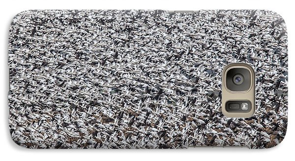 Galaxy Case featuring the photograph Snow Geese by Brian Williamson