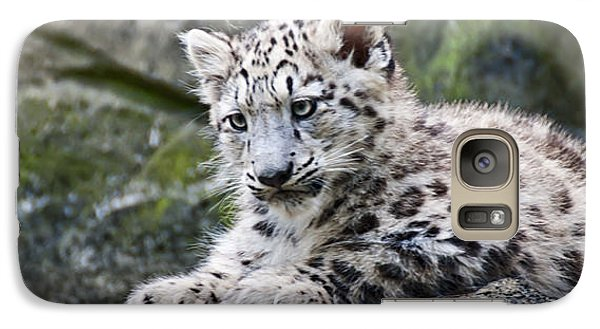 Galaxy Case featuring the photograph Snow Leopard Cub by Chris Boulton