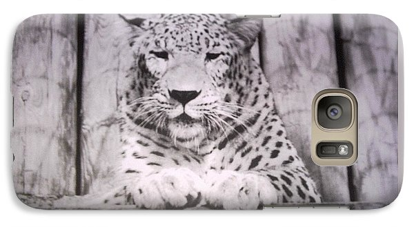 Galaxy Case featuring the photograph White Snow Leopard Chillin by Belinda Lee