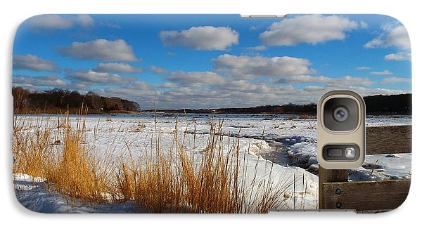 Galaxy Case featuring the photograph Snow Marsh by Dianne Cowen