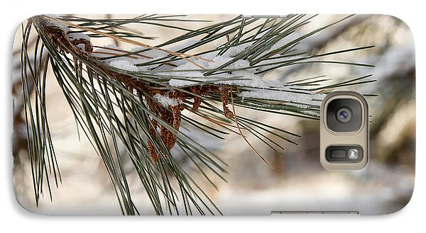 Galaxy Case featuring the photograph Snow Pine by Courtney Webster