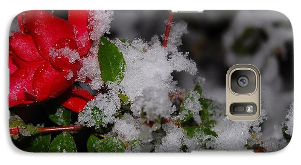 Galaxy Case featuring the photograph Snow Rose by Mim White