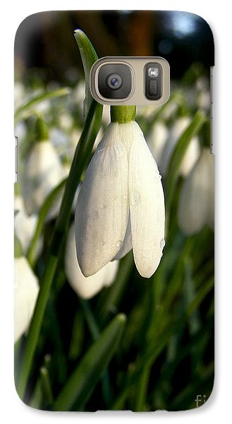 Galaxy Case featuring the photograph Snowdrops by Nina Ficur Feenan