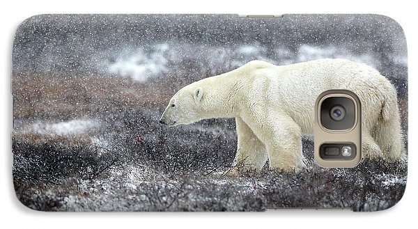 Bear Galaxy S7 Case - Snowing Time by Alessandro Catta