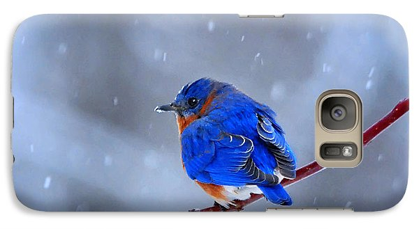 Galaxy Case featuring the photograph Snowy Bluebird by Nava Thompson